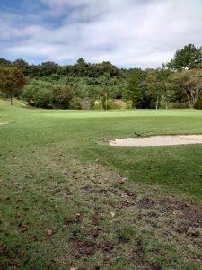ゴルフ場のグリーン